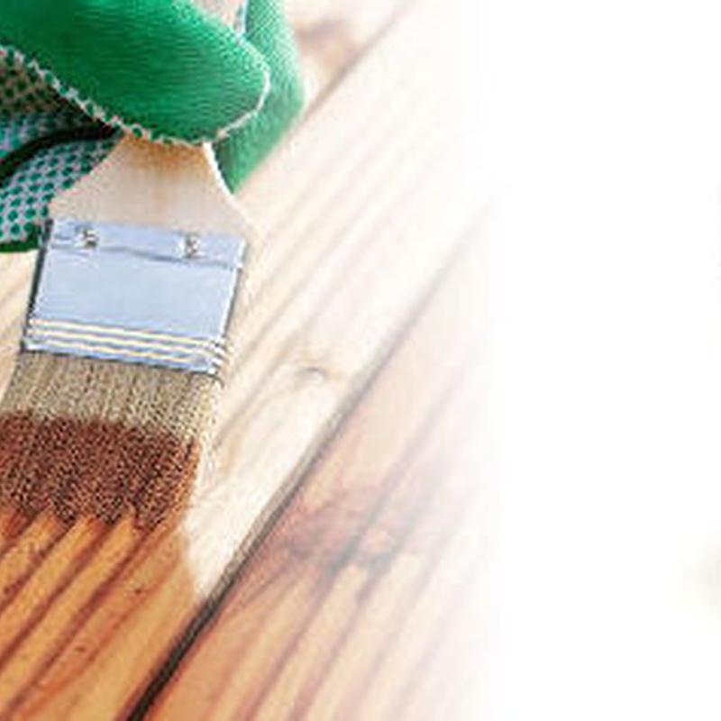 Lasur para madera Xanol