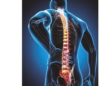 Magnetoterapia: SERVICIOS de Cevi