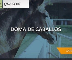 Clases de doma y paseos a caballo en Castelló d'Empúries | Yeguada Claudio Pot