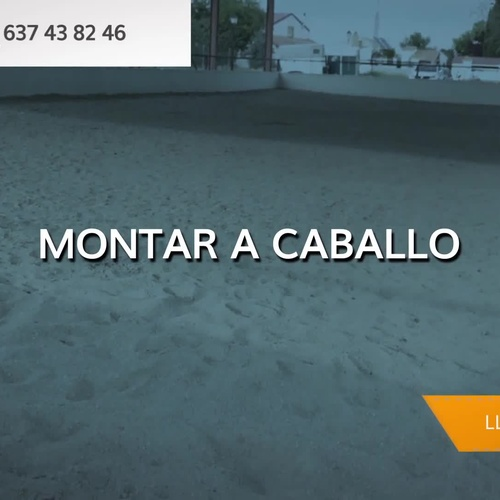 Hípica y equitación en Fuente el Saz de Jarama | Club Hípico Lira Cubero