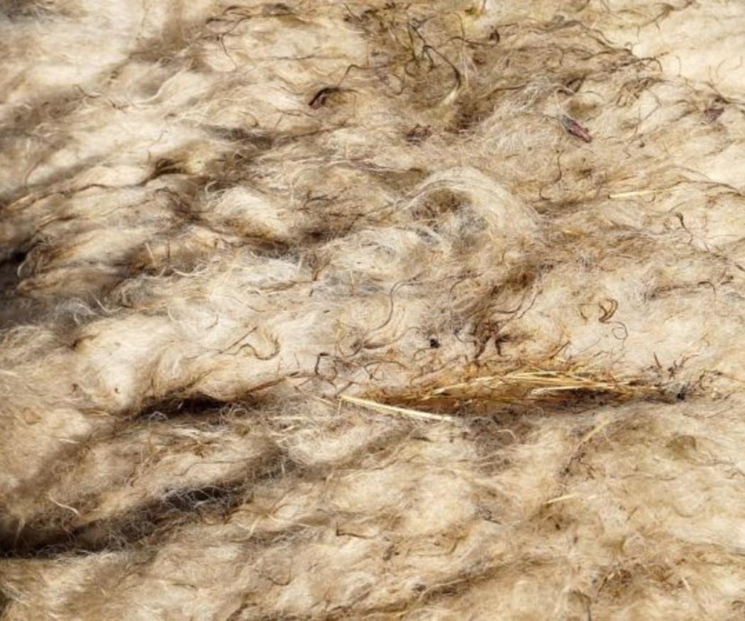Proceso de obtención de la lana