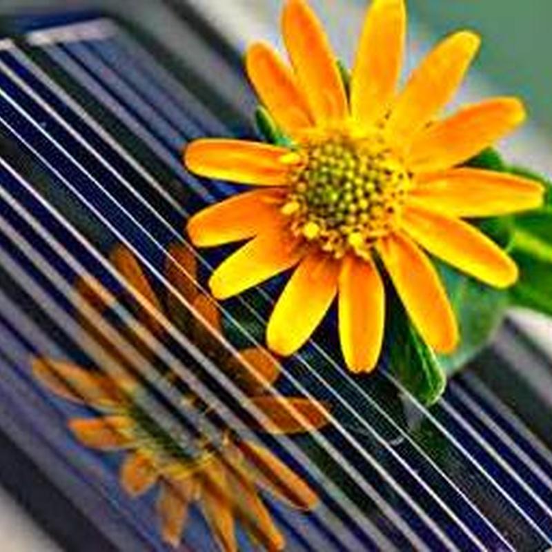 Ejemplo de Instalación de Energía Solar Témica: Productos y Servicios de Intecser Clima