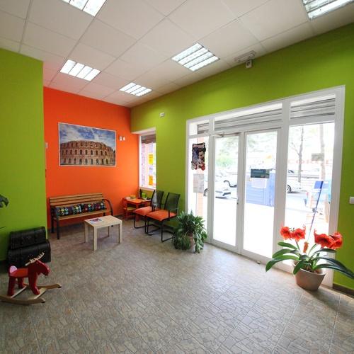 Visita cualquier parte del mundo desde nuestra agencia en Sevilla