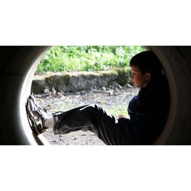 Acoso escolar: Servicios de Psicología Infanto Juvenil Nieves Nieto