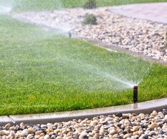 Poda de altura: Servicios de Jardines Jasa