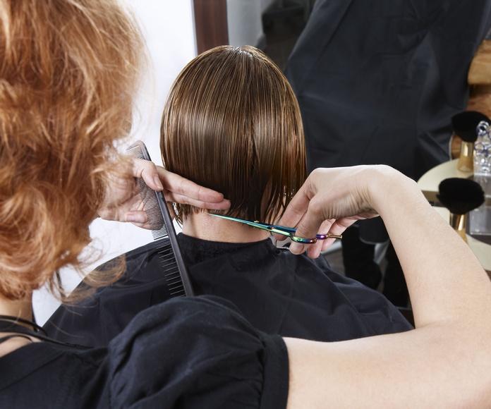 Corte de pelo: Servicios de Peluquería Agrado Uno