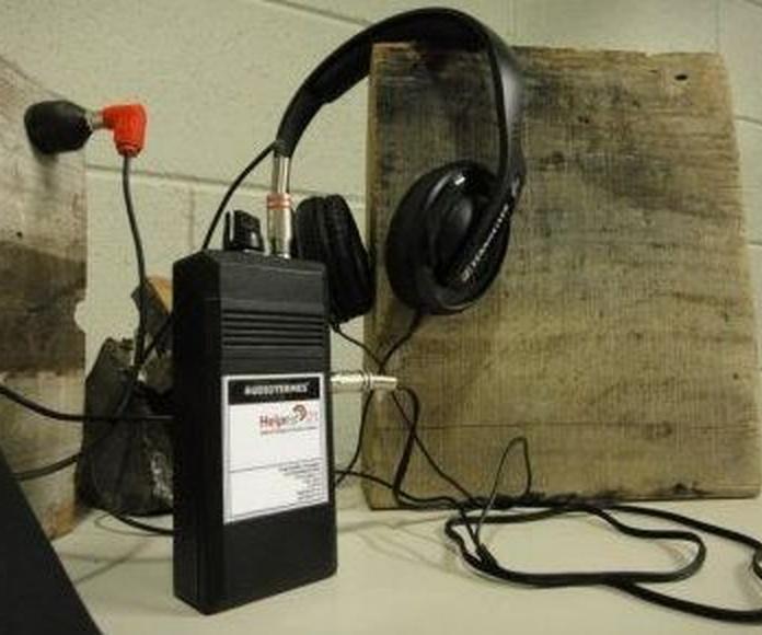 Audiotermes