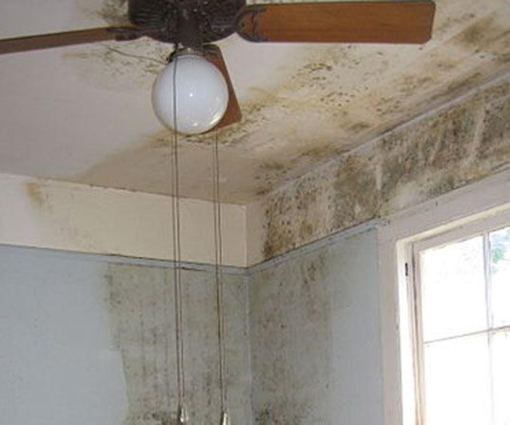 Soluciona las humedades en las paredes
