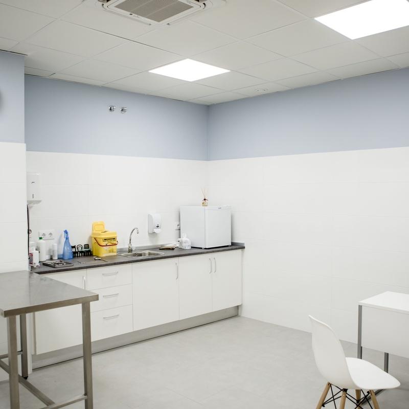 Especialidades: Servicios Veterinarios de Hospital Veterinario Ciudad Real