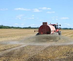 Descubre las ventajas de los fertilizantes foliares