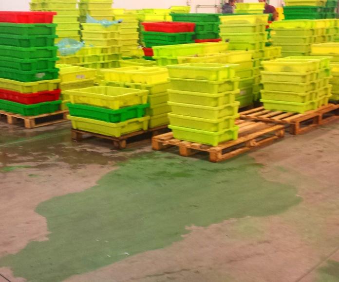 Distribucion nacional: SERVICIOS de Pescastur