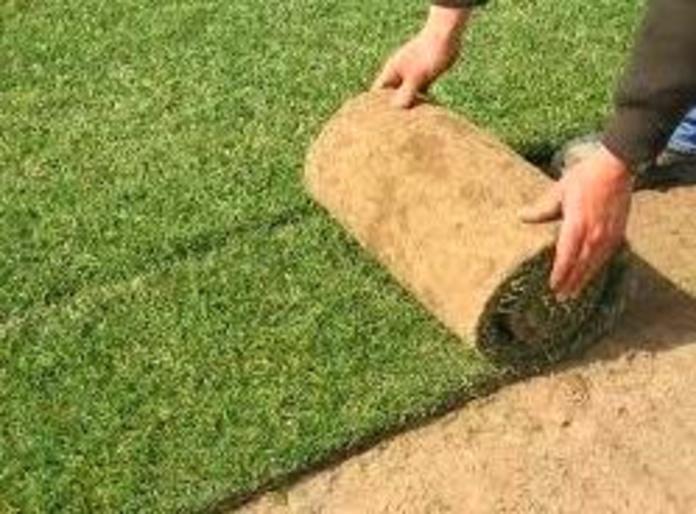 Suministro y colocación da tepe natural en jardines y zonas verdes.