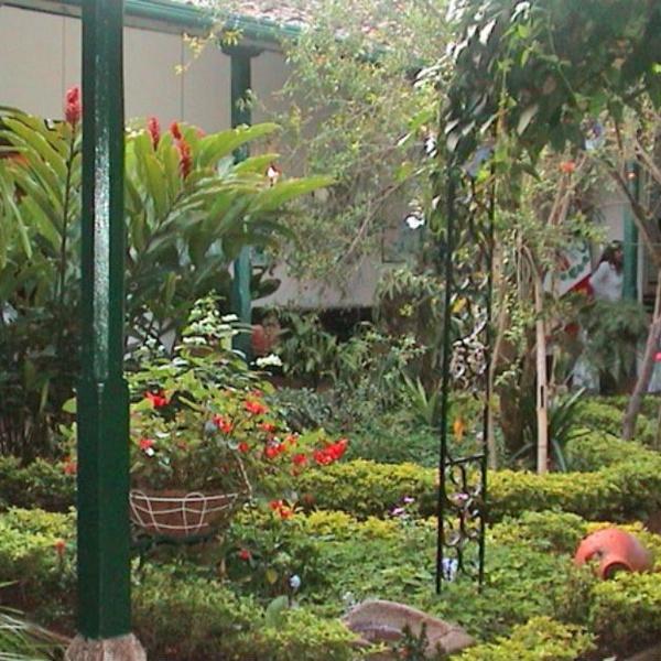 Confía en los mejores para cuidar tu jardín
