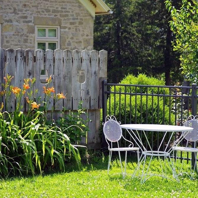 Descubre el minimalismo en el diseño de jardines
