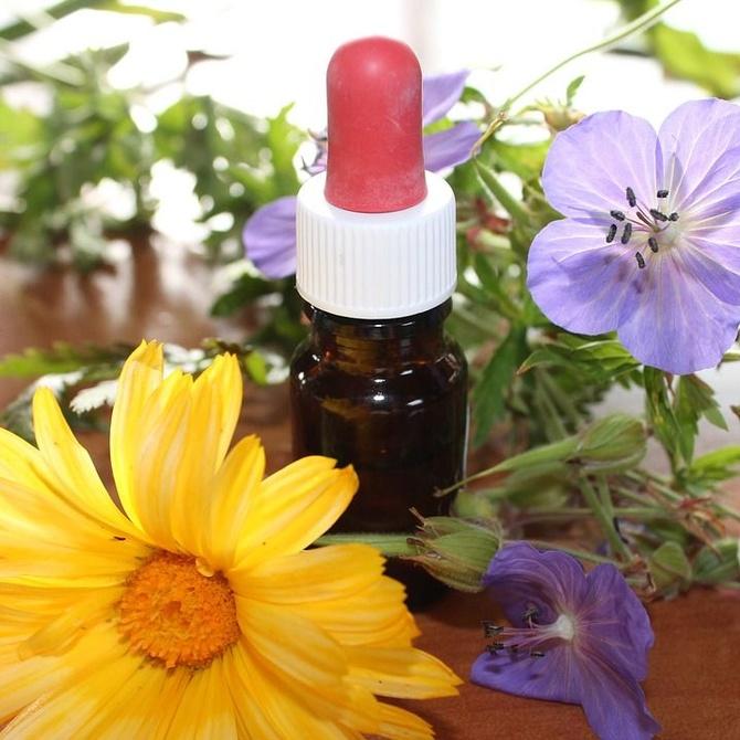 Qué es la homeopatía