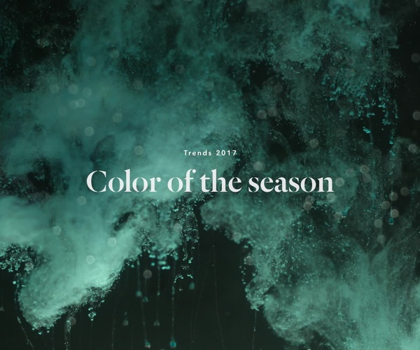 COLOR OF THE SEASON
