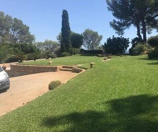 Diseño y mantenimiento de jardines