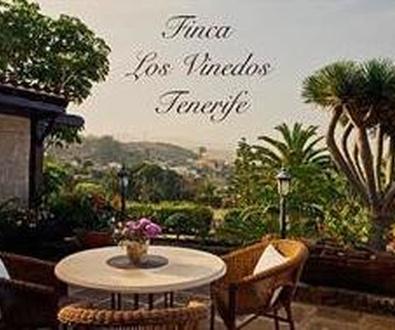 Tourismusfinca auf Teneriffa in La Caridad – Tacoronte