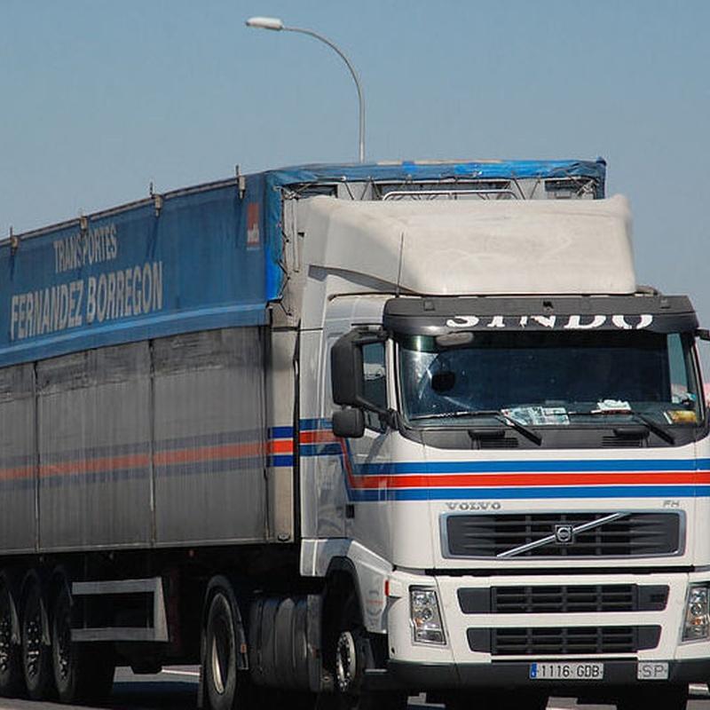 Cargas completas: Servicios de Transportes Fernández Borregón, S.A.