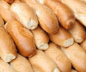 Panes de harina integral