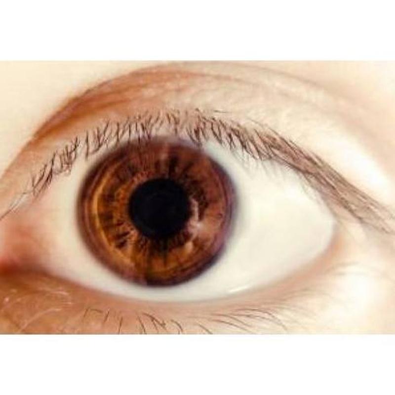 Lentes oftálmicas: Productos y servicios de Óptica Santamaría