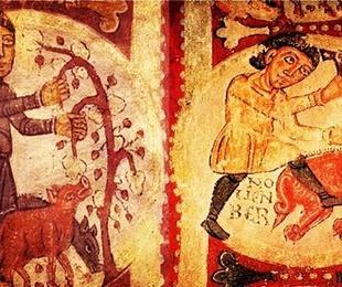 ¡Los orígenes del cerdo ibérico y su elaboración!
