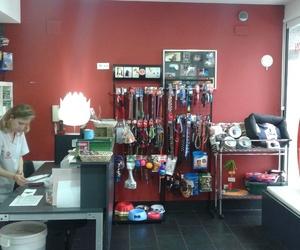 Todos los productos y servicios de Veterinarios: Centro  Veterinario Kukume