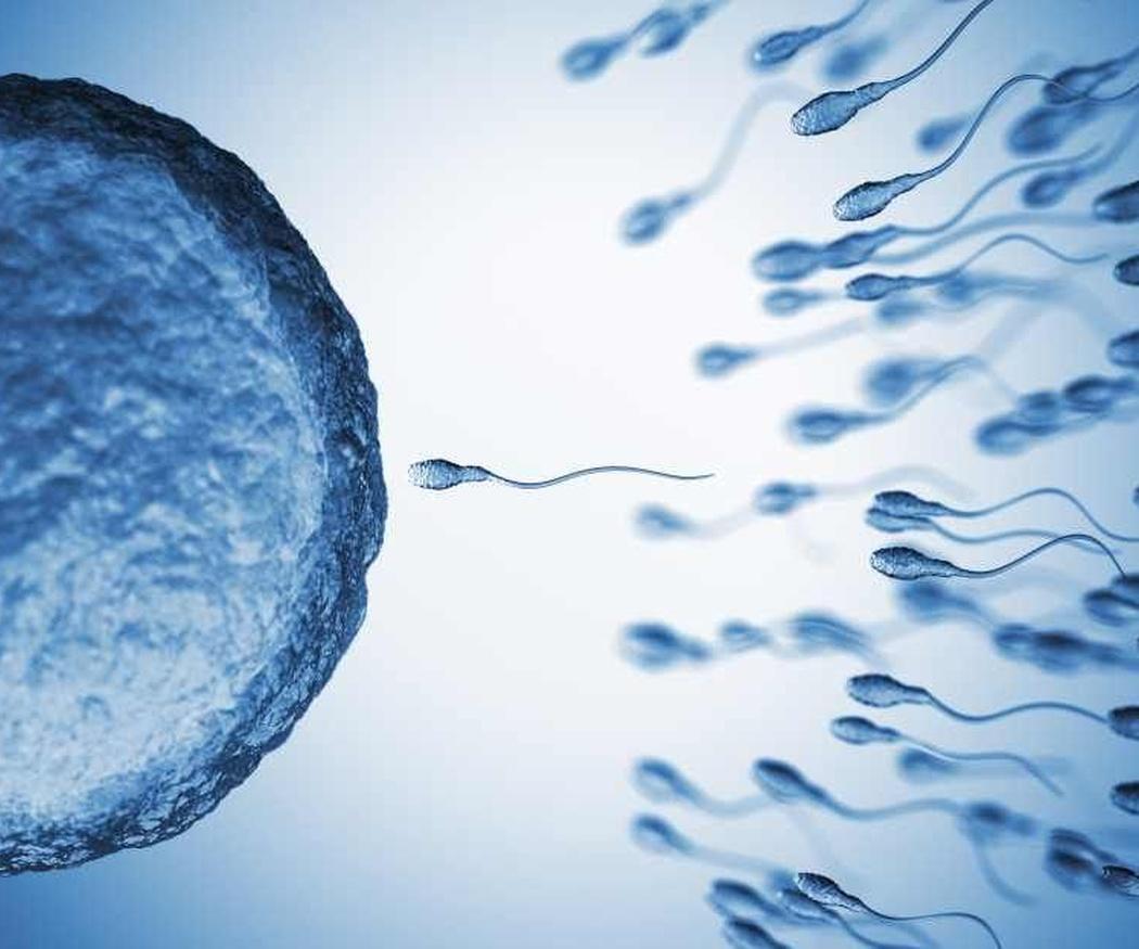 Trucos para aumentar tu fertilidad