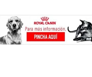 Productos Royal Canin