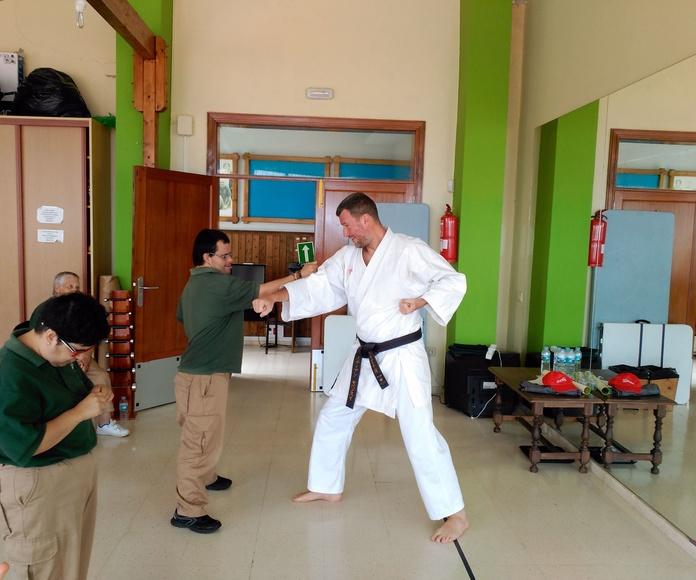 Taller de iniciación al Karate: Proyectos y Servicios de Asociación Domitila