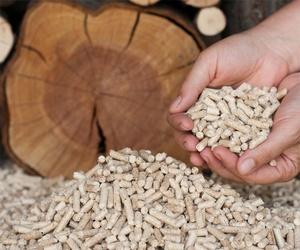 Servicio de venta y transporte de biomasa