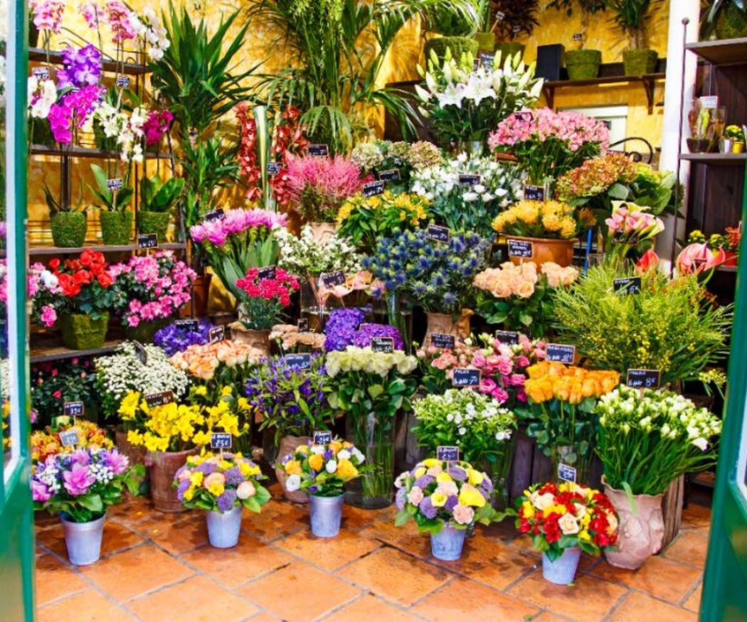 Qué flores elegir según la ocasión