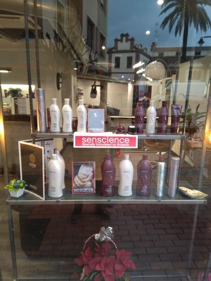 Servicios de peluquería: Peluquería y estética de Gallardo Estilistas