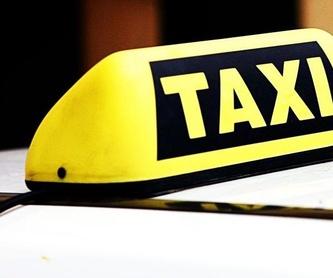 Reuniones y convenciones: Productos y servicios de Taxi Albert