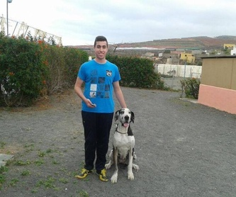 Hembras: Servicios y accesorios de Residencia Canina y Adiestramiento Tarazona
