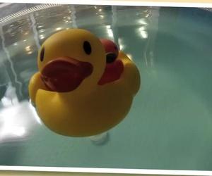 Cursos de natació per a nadons i nens