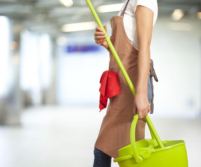 Mantenimientos mensuales: Servicios de Limpiezas Job