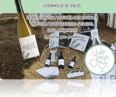 Vinos de la  Bodega Vega de Lucía en Meruelo