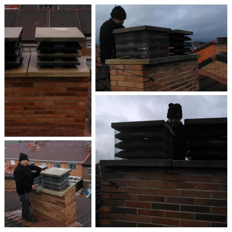 solución a los nidos dentro de la chimenea