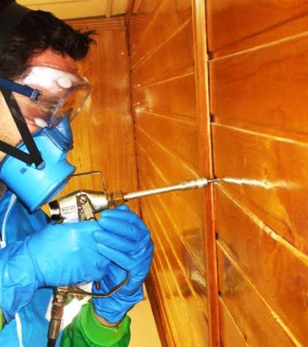 Fumigación de termitas