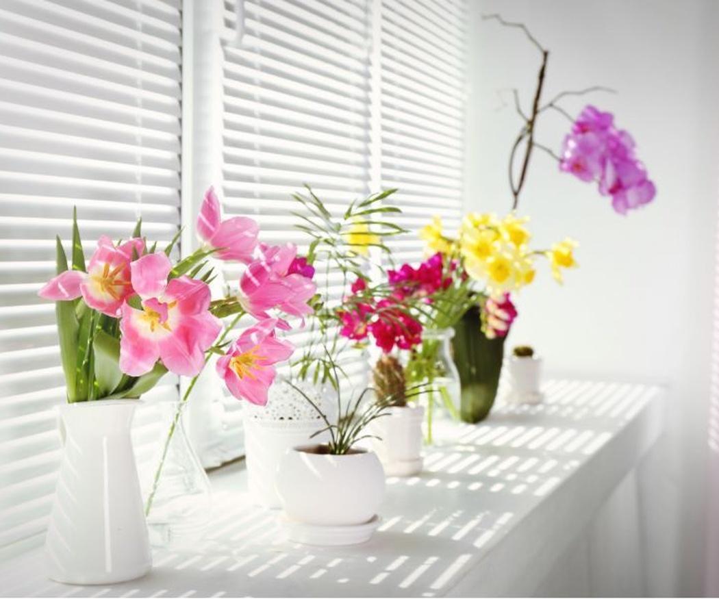 Los beneficios de tener flores en el hogar