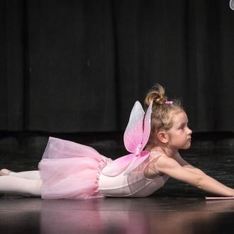 Danza y movimiento