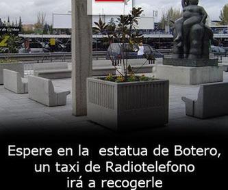 Radio Taxi Batan Aeropuerto: Que ofrecemos de Radio taxi Madrid Aeropuerto