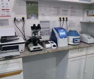 Laboratorio propio