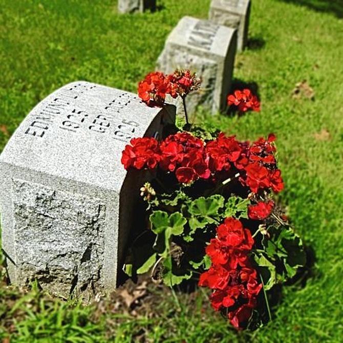 Qué flores llevar a un entierro
