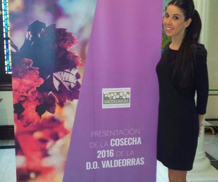 Vinos 2016 D.O. Valdeorras