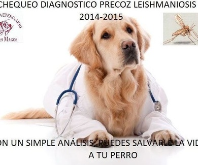 CHEQUEO DIAGNOSTICO PRECOZ LEISHMANIOSIS 2016-2017