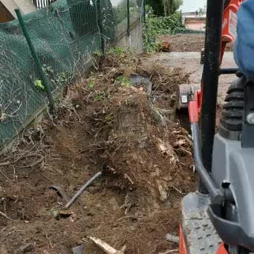 Diseño y mantenimiento integral de jardines en Sopelana | Espacios verdes del Norte