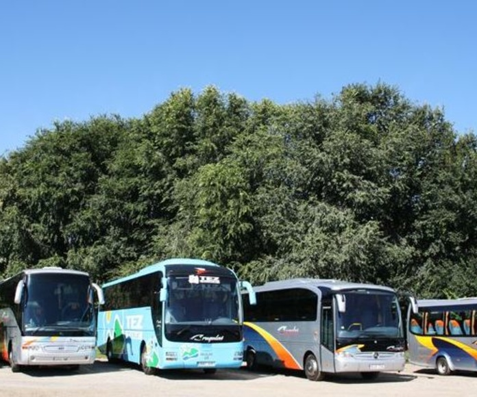 Nuestra flota : Prestaciones  de Autocars Brugulat