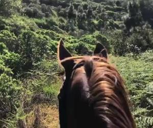 Paseo a la Montaña Cabreja
